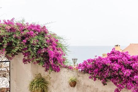DS_MediterraneanCollection_WM_15