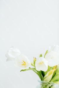 EasterCollection_WM_43