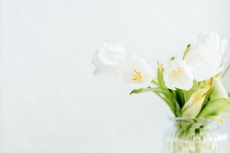 EasterCollection_WM_45