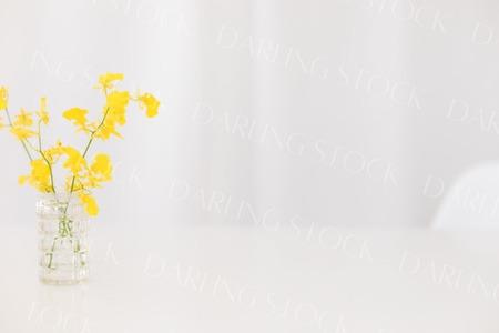 DS_YellowSummerCollection_WM_05